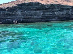 Isla Espiritu Santo aguas cristalinas renta de yates la paz