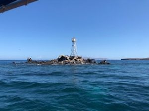 renta de yates en la paz isla San Rafaelito
