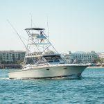 blackfin 39 pies en renta los cabos