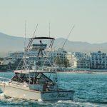 blackfin 39 pies yate de pesca los cabos