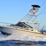 blackfin 39 yate de pesca cabo san lucas en renta