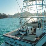 blackfin 39 yate de pesca en renta cabo san lucas